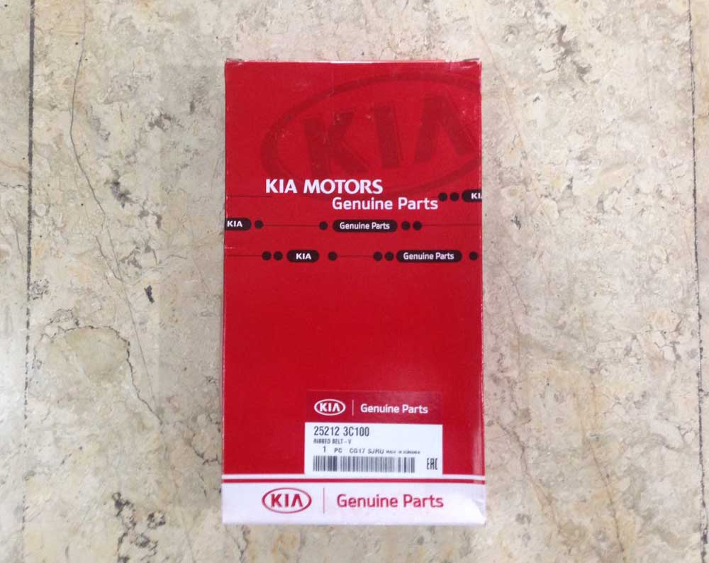 Kia-Mohave-Ribbed-Belt-1